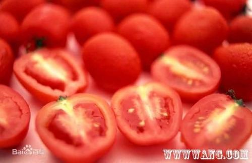 深圳番茄红素